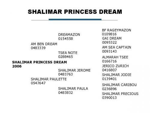 Shalilmar Princess Dream