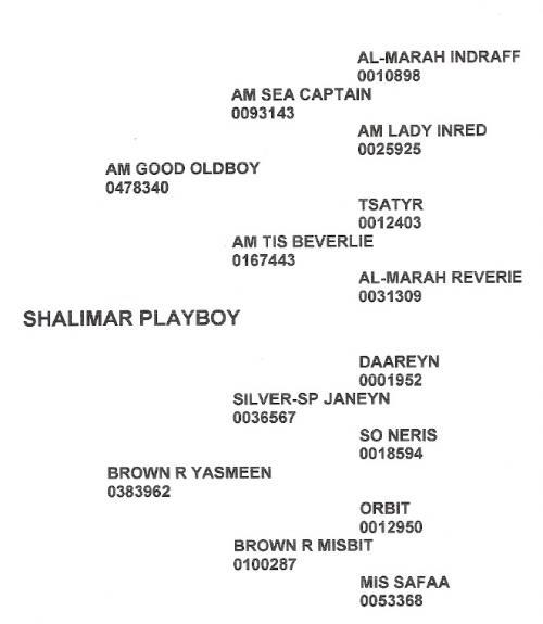 Shalimar Playboy