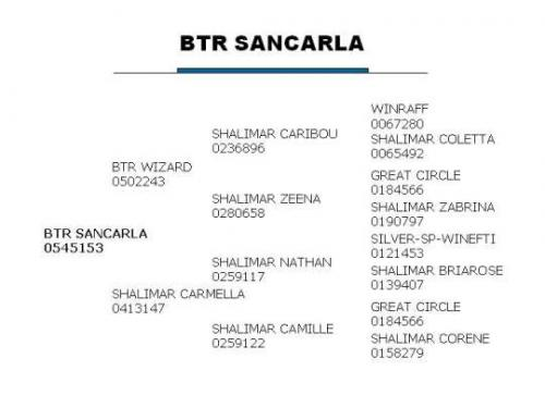 BTR SanCarla