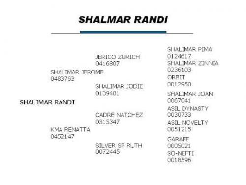 Shalimar Randi Pedigree